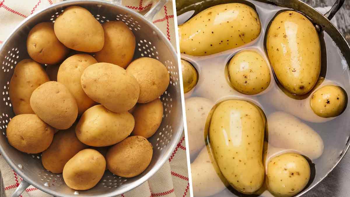 7 grosses erreurs que l'on fait tous lors de la cuisson des pommes de terre